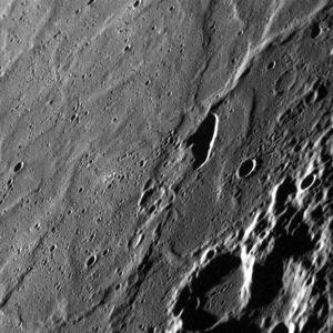 20130125-110603.jpg